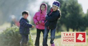 Take Loudoun Home Holidays promotional image