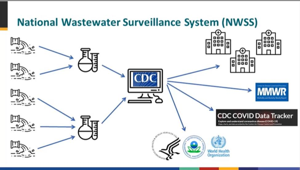 Depiction of how the national wastewater surveillance system would work